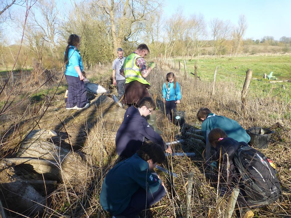 Annual dog wood cut back and hedge maintenance, Action for the River Kennet