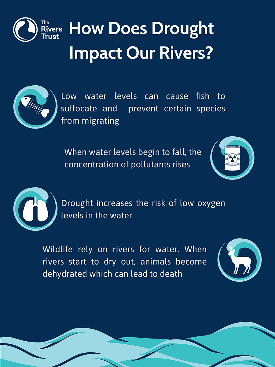 How Does Drought Impact Our Rivers_