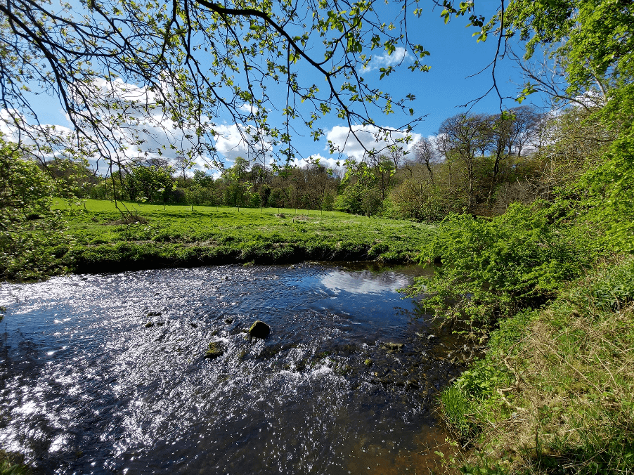 Jenny Pearson river scenery