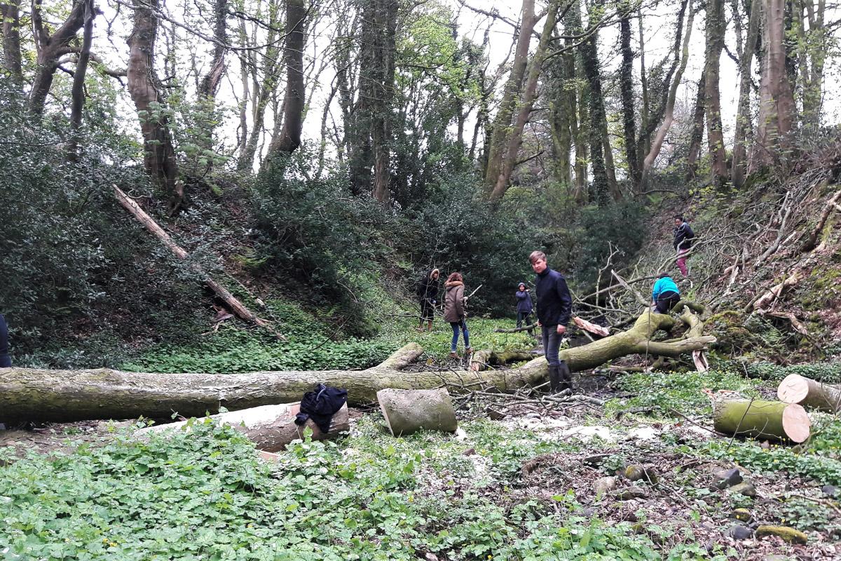 leaky-dam-west-cumbria-rivers-trust