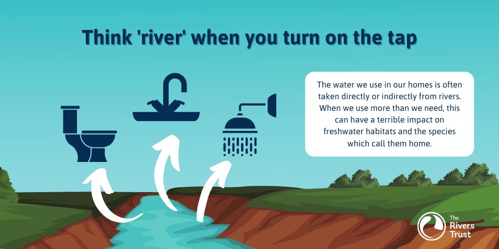Think rivers | World Water Week