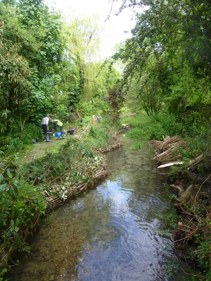 River Restoration on the River Dun – Action for the River Kennet