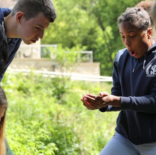 Bristol Avon Rivers Trust - Eels in the classroom