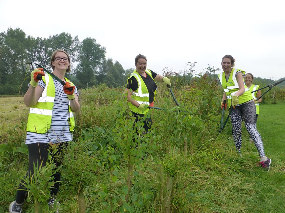 Hedge and wetland maintenance, Action for the River Kennet