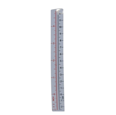 Picture of FRONT SCALE
