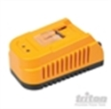 Picture of BATTERY CHARGER 110V USA