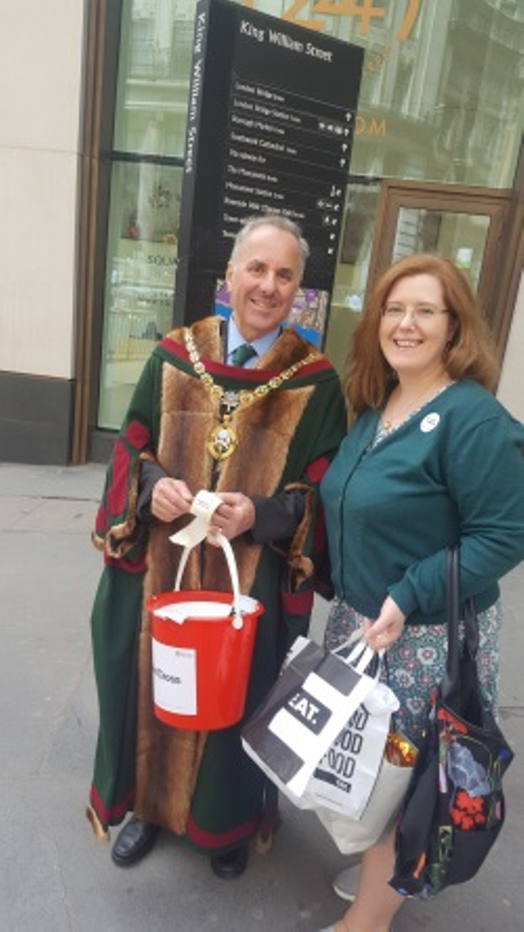 Collecting money for the red cross