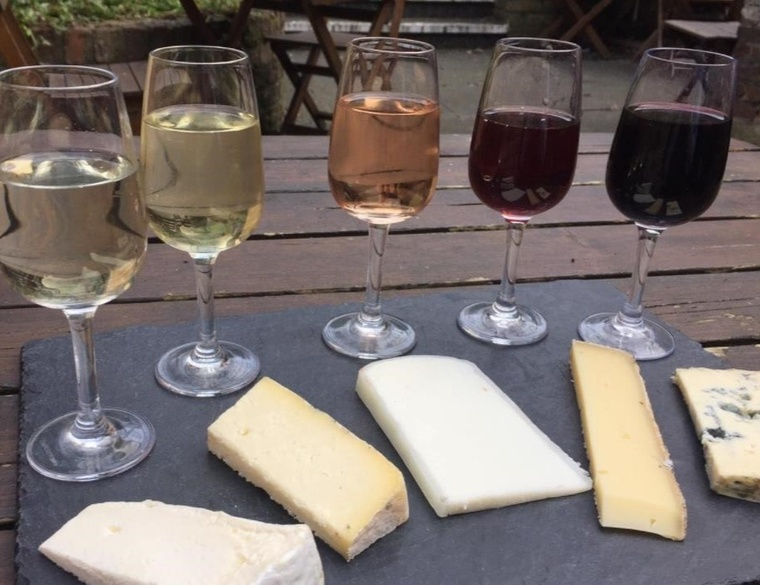 The 5 pairings of cheese and wine - delicious!