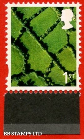 1st Class Black and Greenish Yellow Fields Enschede (from DY11)