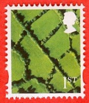 1st Class Bright green and greenish black Patchwork Fields: Litho Cartor (2018) Small Font