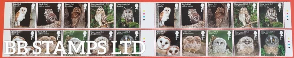 2018 Owls Traffic Light Gutter Pair