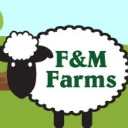 F & M Farms Lamb
