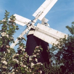 Fosters Mill