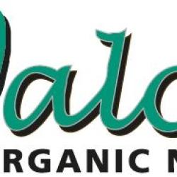 Walcot Organic Nursery