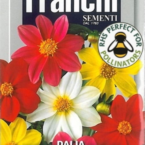 Franchi Dahlia Semplice