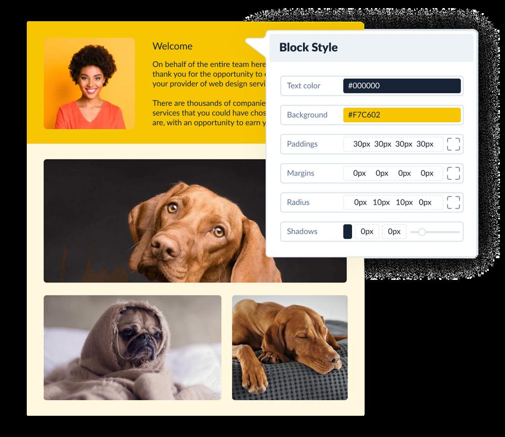 Plutio - illustration design editor., invoice and proposal designer