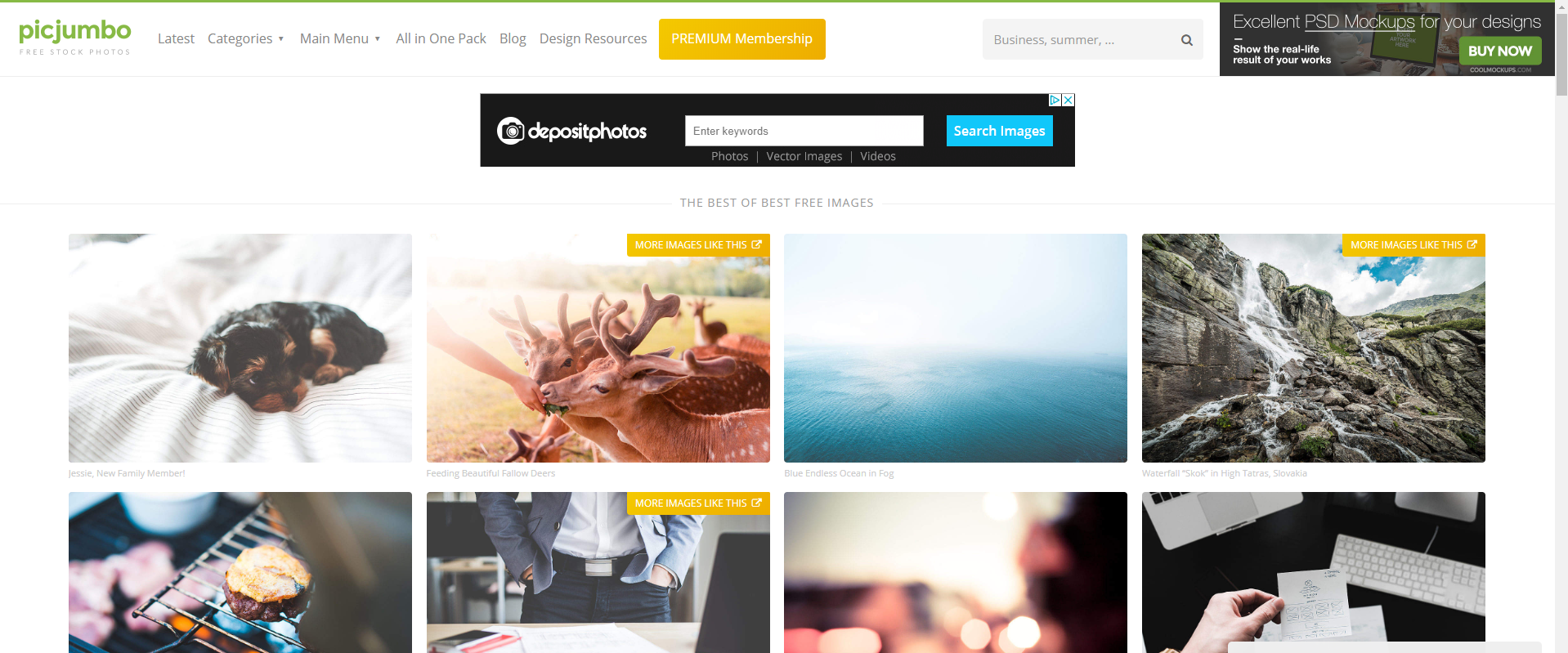 Picjumbo royalty free images