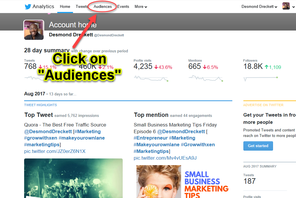 twitter analytics - click on audiences