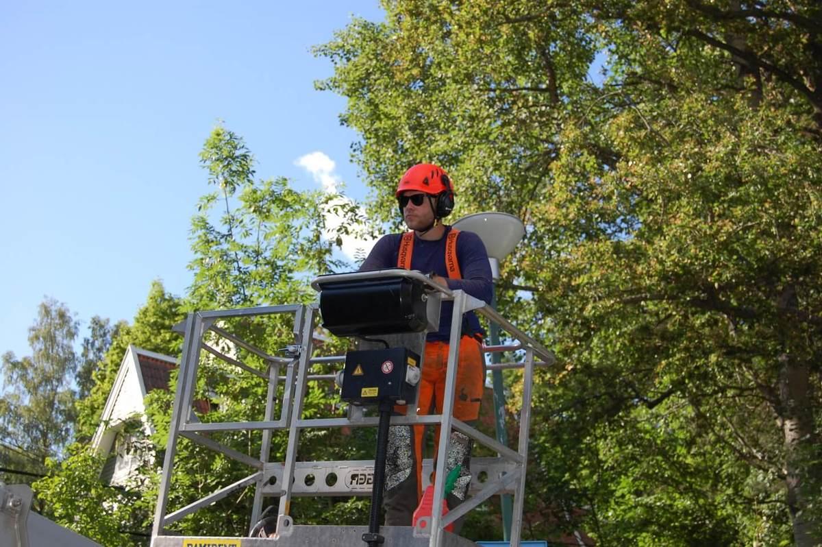 Trädfällning Huddinge, Trädfällare Huddinge, Arborist Huddinge bild