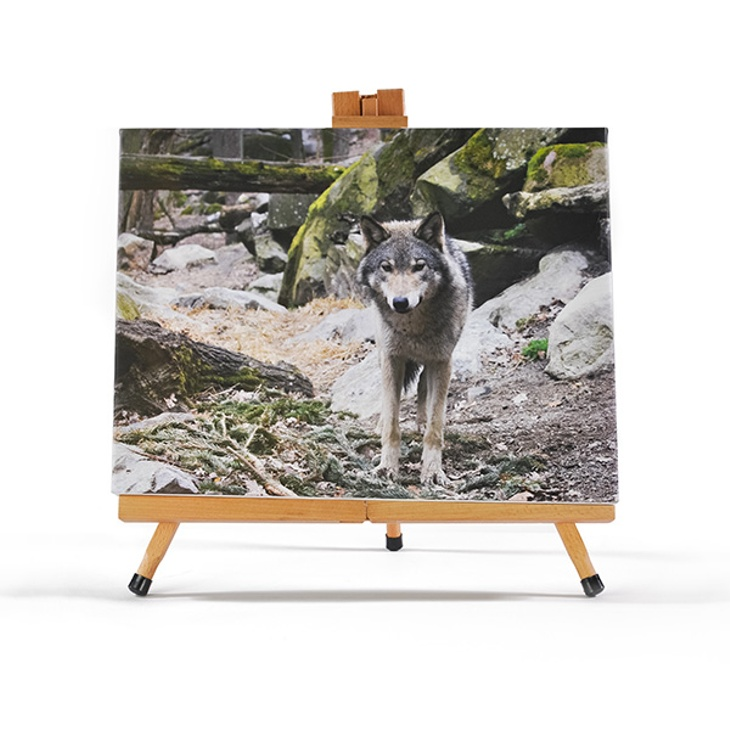 "16"" x 12"" Gallery-Wrapped Canvas"