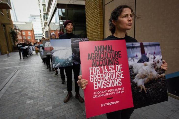 Animal Equality Protest