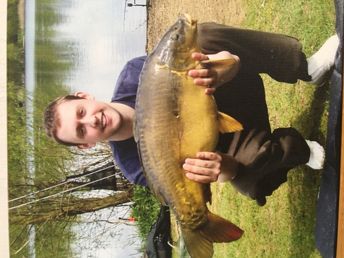 Mirror Carp captured from Oxford Linear by Ben