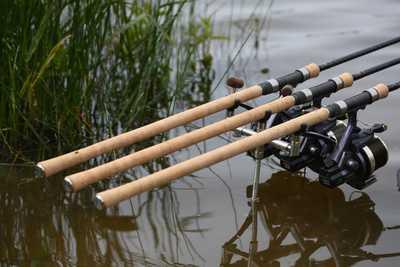 best carp rods