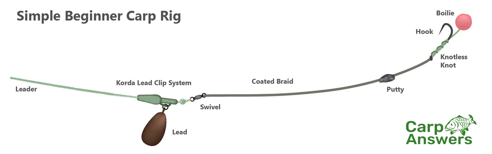 beginner carp rig diagram