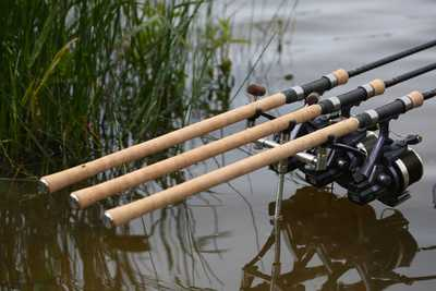 Everything you need to know about a Fishing Rod Licence