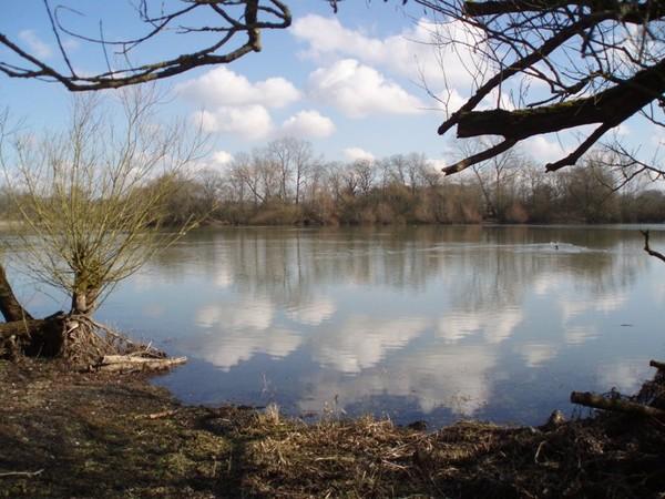 carp fishing near me - Naseby reservoir