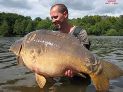 how to catch big carp