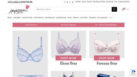 Ample Bosom website screenshot