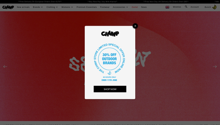 The Chimp Store website