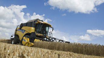 Copa and Cogeca revise EU grain forecasts downwards