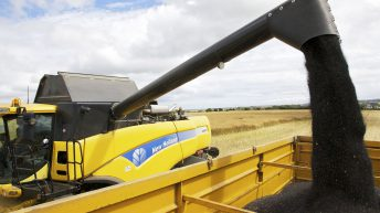 Summer heatwave helps oilseed rape harvest catch up on slow start