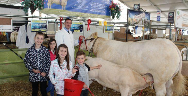Breeders split on merits of four-day Balmoral Show