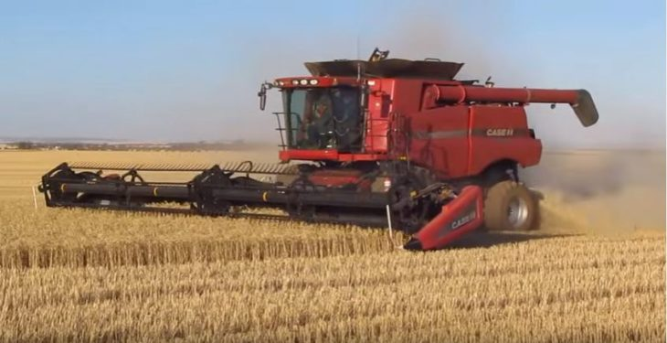 Video: 'Killer' machine to tackle herbicide resistant weeds