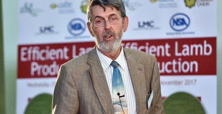 TV farmer Bobby Lennox: An exchange shaped 40 years of my breeding