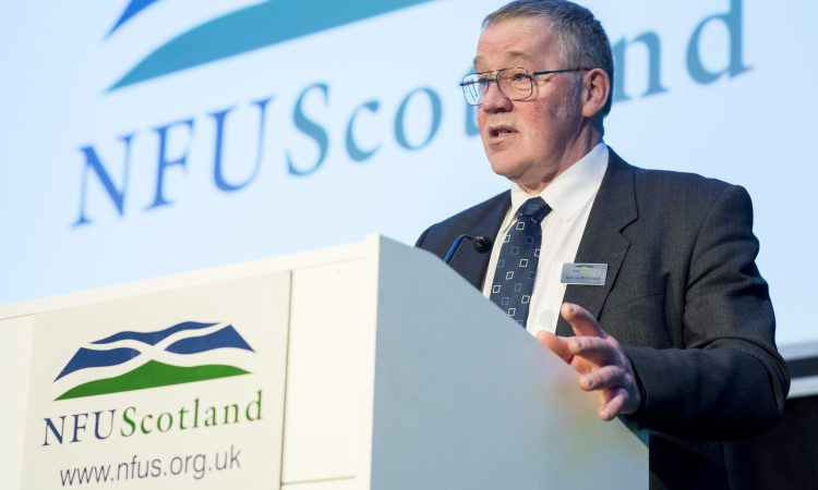 Three in the running for NFUS top spots