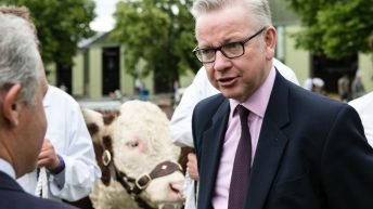 Defra Secretary and Brexit Minister to attend Royal Highland Show
