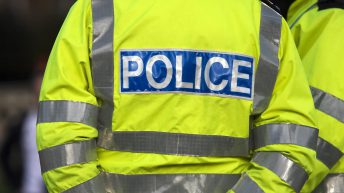 Cows and calves stolen from field in Armagh