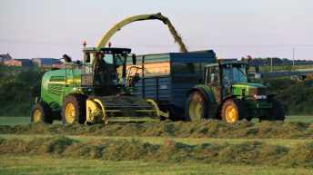Silage 2018: Your 3-point plan to head off potential shortages