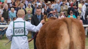 2020 Great Yorkshire Show cancelled