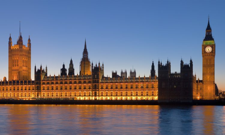 MPs to start setting path of UK Agriculture Policy next week
