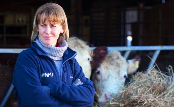 Tariff-free element of Brexit deal 'will be a particular relief for farmers' – NFU