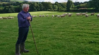 'No-deal' technical notes offer little comfort for Welsh farming