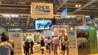 Future of AHDB up for discussion as consultation opens