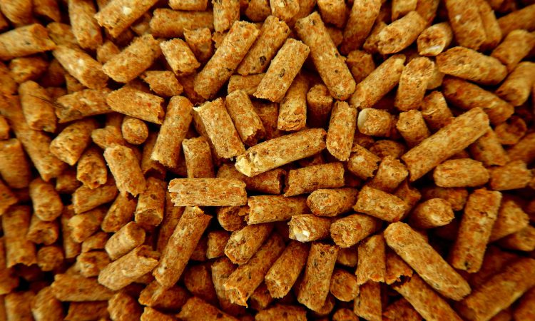 Northern Ireland's compound animal feed sector continues to grow