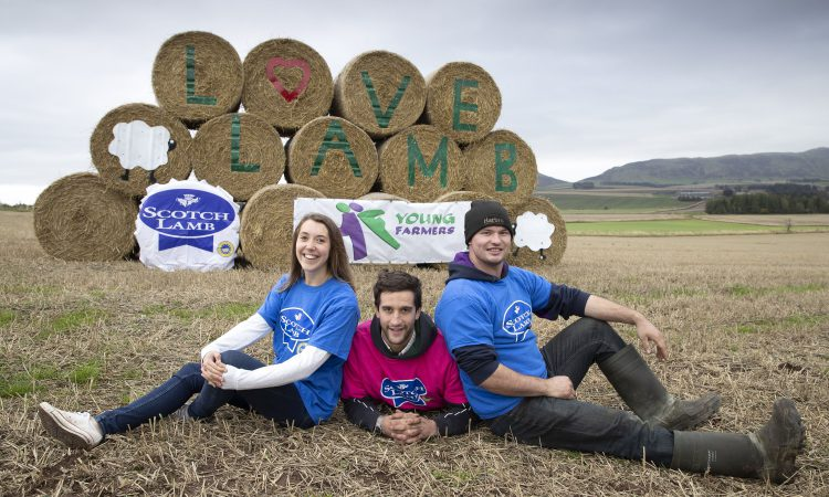 'Bale Art' competition sees Scottish young farmers get creative