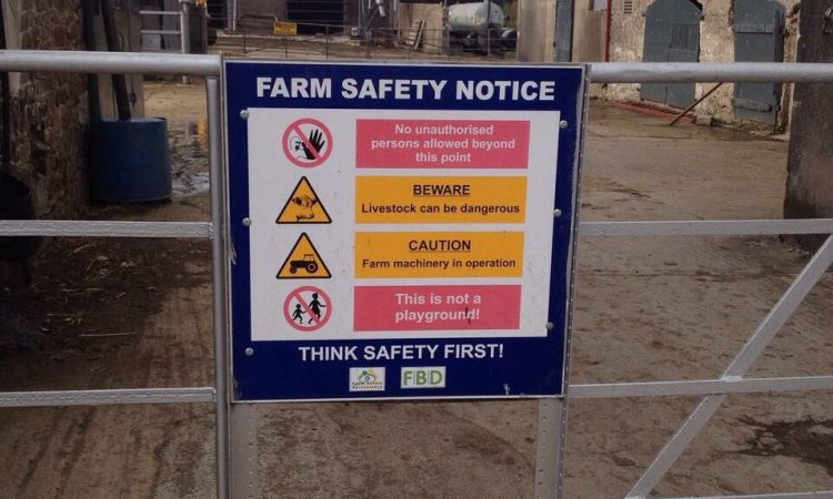 Agricultural building contractors fined after worker falls from height
